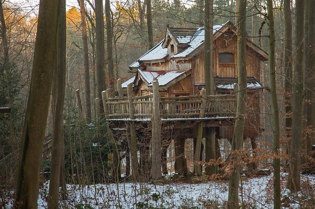 dům ve stromech